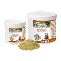 PerNaturam Enterogan – 100g