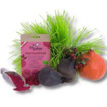 Kraftschöpfer Gemüse-Obst-Mischung von Myokee – 40g